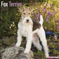 bokomslag Fox terrier calendar 2018