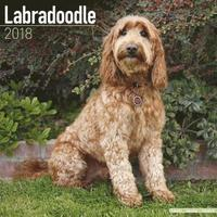 bokomslag Labradoodle calendar 2018