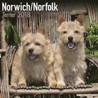 bokomslag Norwich/norfolk terrier calendar 2018