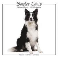 bokomslag Border collie studio calendar 2018