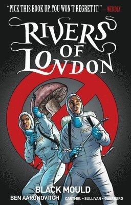 bokomslag Rivers of london