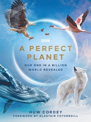 A Perfect Planet 1