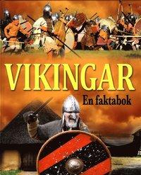 bokomslag Vikingar : en faktabok