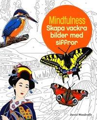 bokomslag Mindfulness : skapa vackra bilder med siffror
