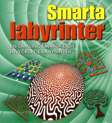 bokomslag Smarta labyrinter