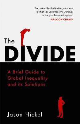 bokomslag The Divide