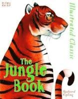 bokomslag Illustrated classic: the jungle book