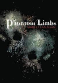 bokomslag Phantom Limbs