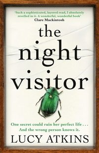 bokomslag Night visitor - the stunning new thriller from the bestselling author