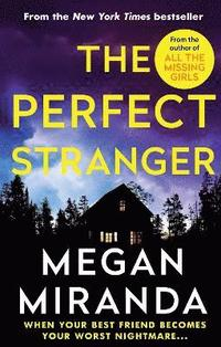 bokomslag The Perfect Stranger