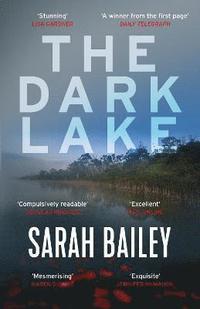 bokomslag The Dark Lake