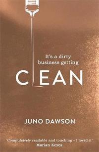 bokomslag Clean