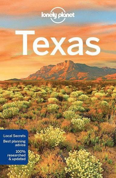 bokomslag Texas