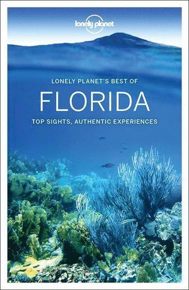 bokomslag Discover Florida