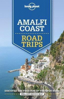bokomslag Amalfi Coast Road Trips