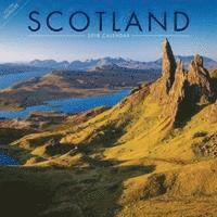 bokomslag Scotland w