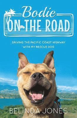 Bodie on the road - driving the pacific coast highway with my rescue dog 1