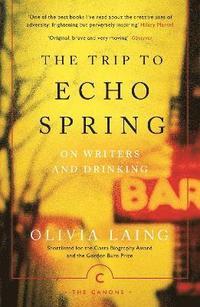 bokomslag The Trip to Echo Spring