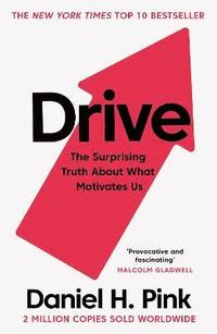 bokomslag Drive: The Surprising Truth About What Motivates Us