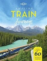 bokomslag Amazing Train Journeys