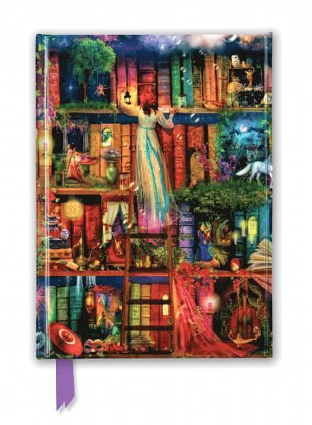 Anteckningsbok 22x16cm linjerad Aimee Stewar : Treasure Hunt Bookshelves 1