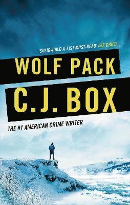 bokomslag Wolf Pack
