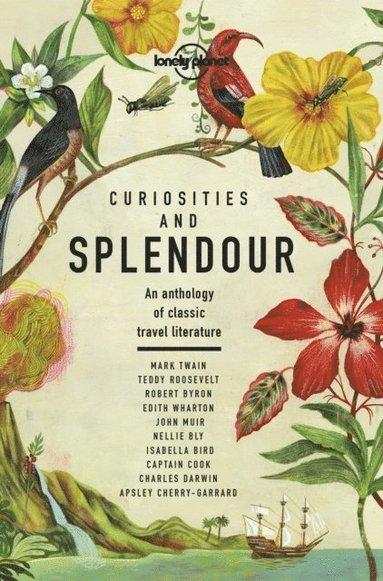 bokomslag Curiosities and Splendour: An anthology of classic travel literature