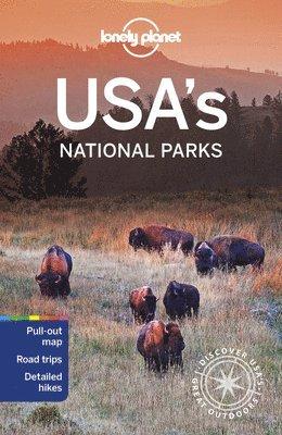 bokomslag USA's National Parks