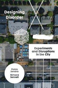 bokomslag Designing Disorder