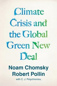 bokomslag Climate Crisis and the Global Green New Deal