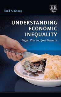 bokomslag Understanding Economic Inequality