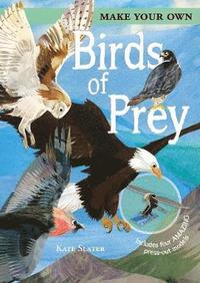 bokomslag Make Your Own Birds of Prey