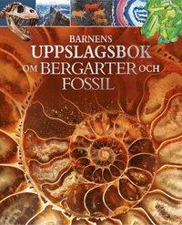 bokomslag Barnens uppslagsbok om bergarter och fossil