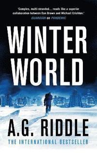 bokomslag Winter World