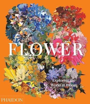 bokomslag Flower: Exploring the World in Bloom