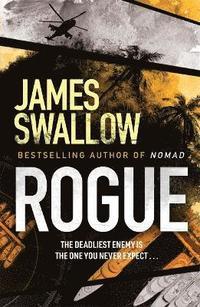 bokomslag Rogue