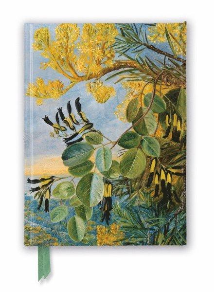 Anteckningsbok 22x16cm linjerad Kew Garden's: Flowers of the Flame Tree 1