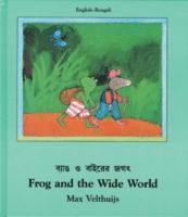 bokomslag Frog and the Wide World