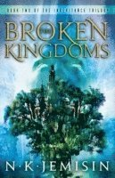 bokomslag Broken kingdoms