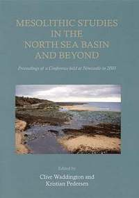 bokomslag Mesolithic Studies In The North Sea Basin And Beyond
