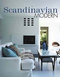 bokomslag Scandinavian modern home