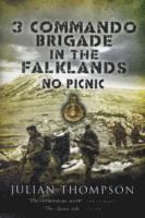 bokomslag 3 Commando Brigade in the Falklands: No Picnic