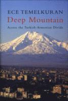 bokomslag Deep Mountain