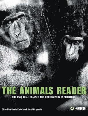 bokomslag The Animals Reader