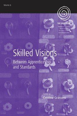 bokomslag Skilled Visions: Between Apprenticeship and Standards