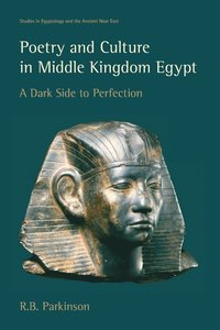bokomslag Poetry and Culture in Middle Kingdom Egypt
