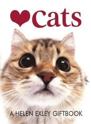 bokomslag Love Cats