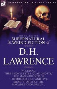 bokomslag The Collected Supernatural and Weird Fiction of D. H. Lawrence-Three Novelettes-'Glad Ghosts, ' the Man Who Died, ' the Border Line'-And Five Short St