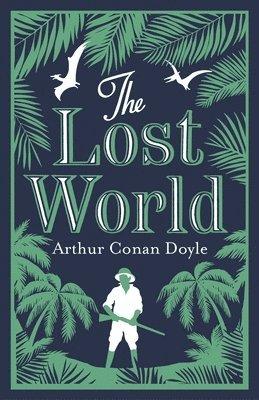 bokomslag Lost world