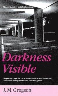 bokomslag Darkness Visible